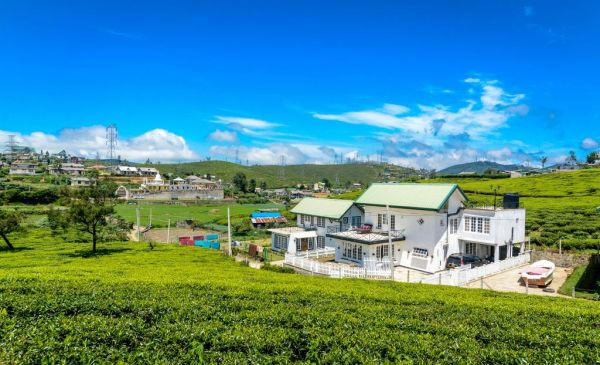 Nuwara Eliya: Villa Tea Fields